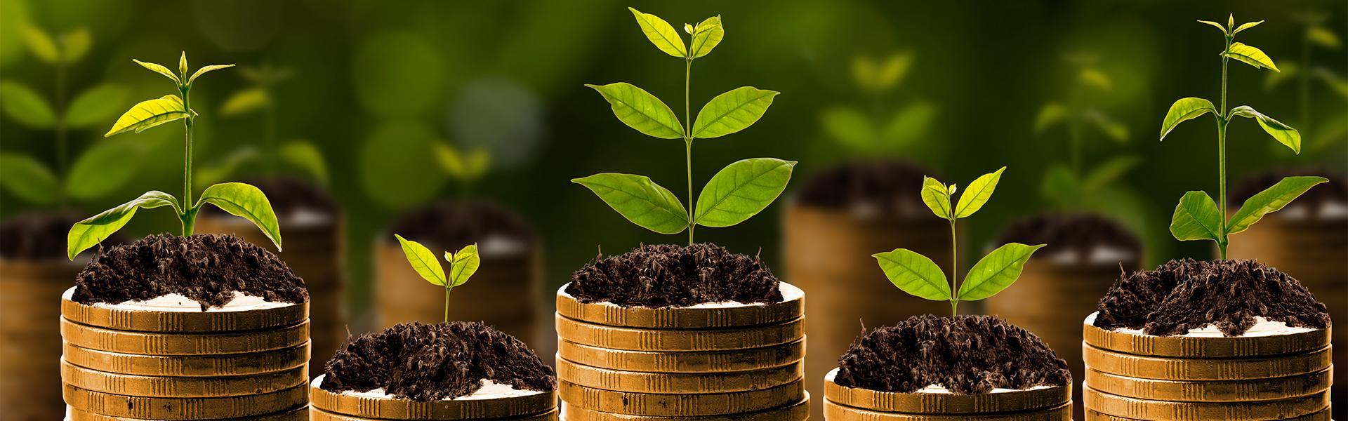 Monetary growth
